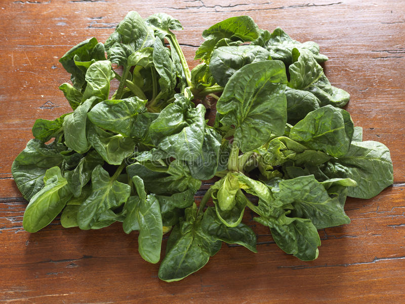 Organic spinach royalty free stock photo