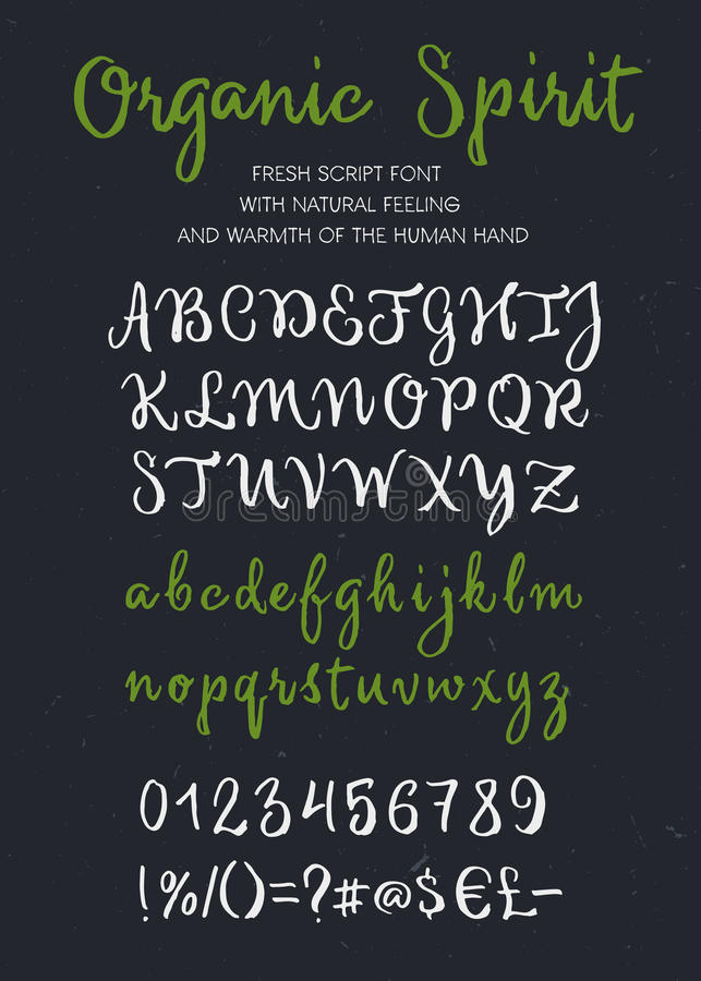 Organic spirit vector brush script alphabet stock photos
