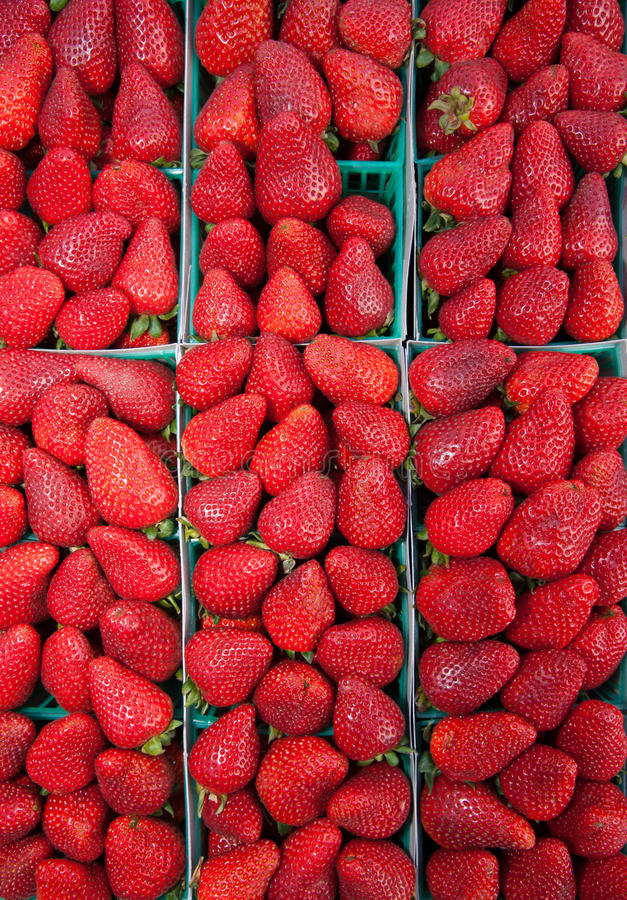 Organic Strawberries stock photos