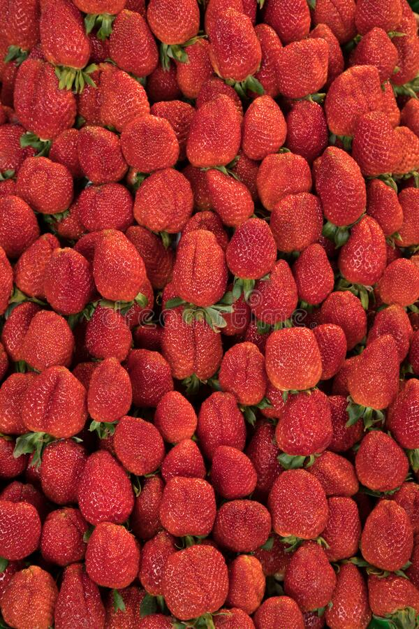 Organic Strawberries Creating a Red Background stock images