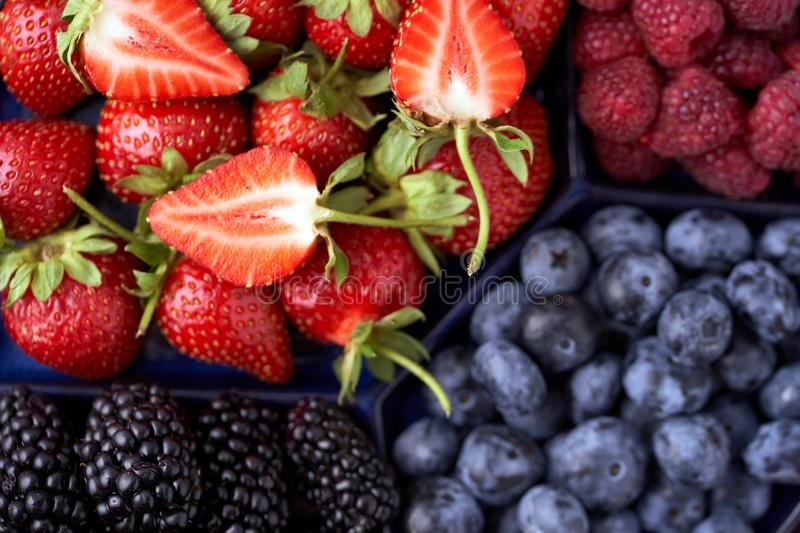 Organic strawberries, raspberries, blueberries, blackberries on a separate dish close-up on a solid concrete background. Healthy eating Vegan food. High Diet stock photos