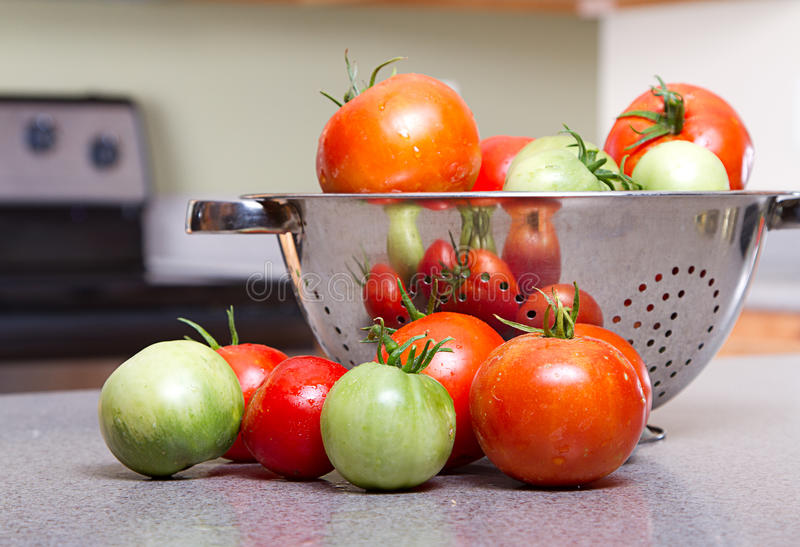 Organic Tomatoes In A Colander Royalty Free Stock Photos