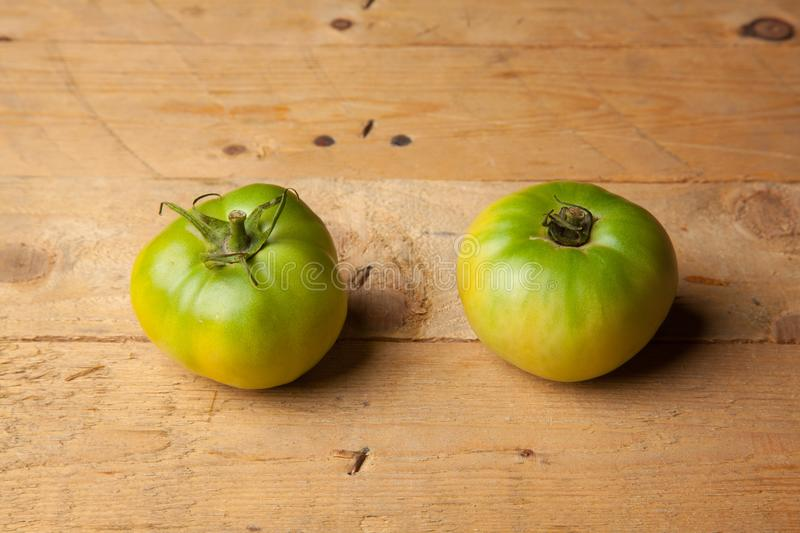 Green tomatoes on plain background. Organic tomatoes, grown without chemicals or pesticides, green tomatoes on a plain background. There are people who like to royalty free stock images