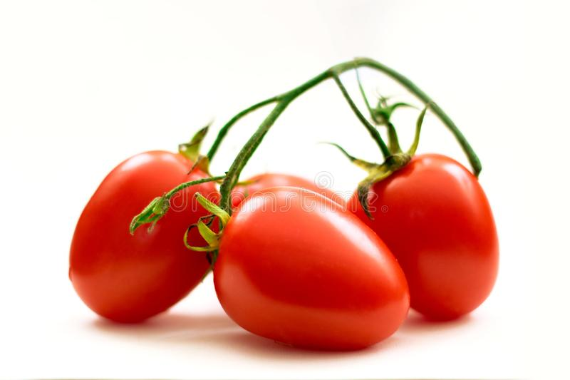 Organic tomatoes from Mexico. Red tomatoes, saladet version, a very important salad ingredient royalty free stock images