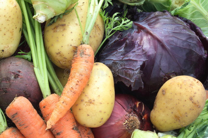 Download Organic vegetables stock image. Image of organic, food - 10667129