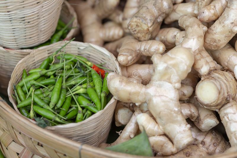 Organic vegetables. Chili and ginger are plants that are used for medicine. And Thai cooking. Spices and herbs on basket. Thai royalty free stock photos