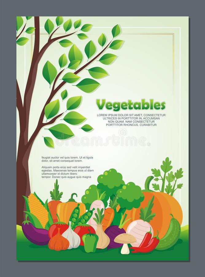 Organic Vegetables Flyer, with new and lovely design. Organic Vegetables Flyer, with lovely, stylish and colorful design, suitable for banner, flyer, background vector illustration