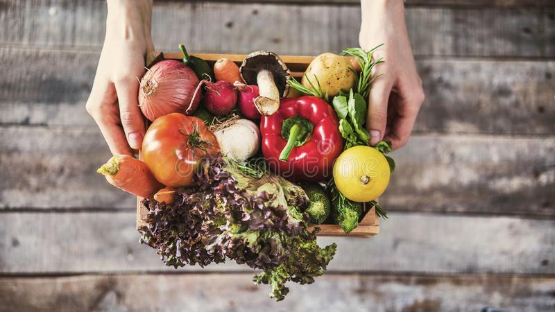 Organic vegetables healthy nutrition concept on wooden background stock photos