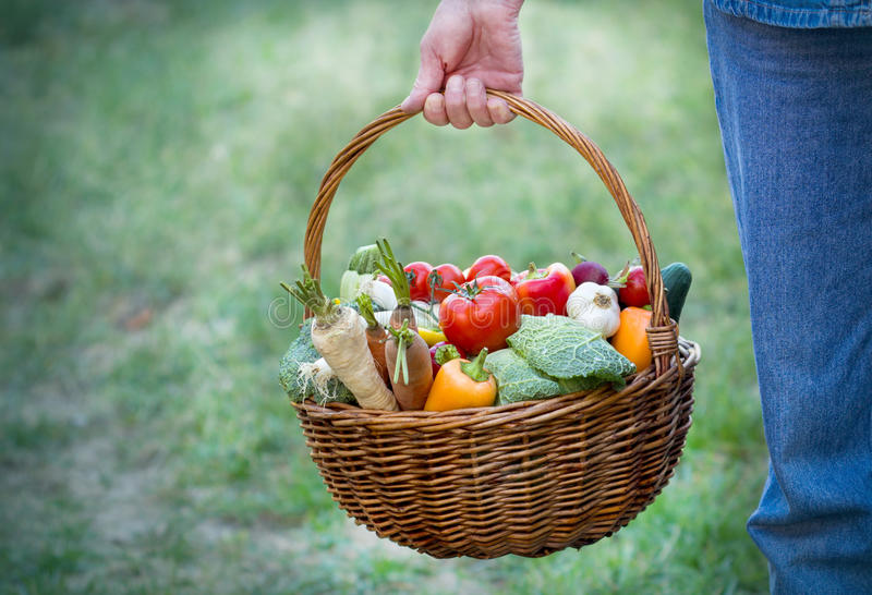 Download Organic Vegetables In A Wicker Basket Stock Image - Image: 28073929