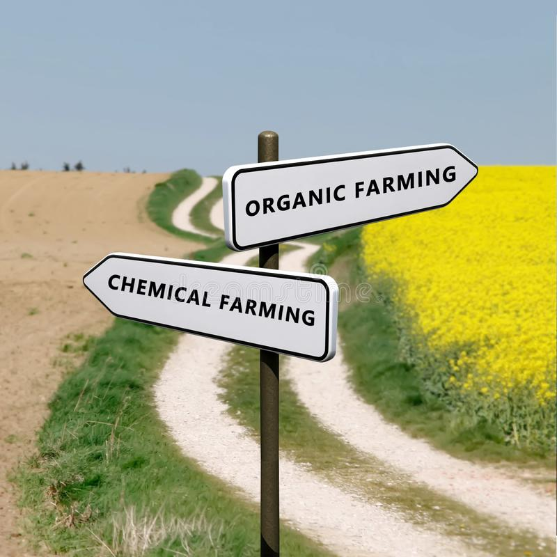 Organic vs chemical farming. Wise choice. alternative to chemical farming royalty free stock images