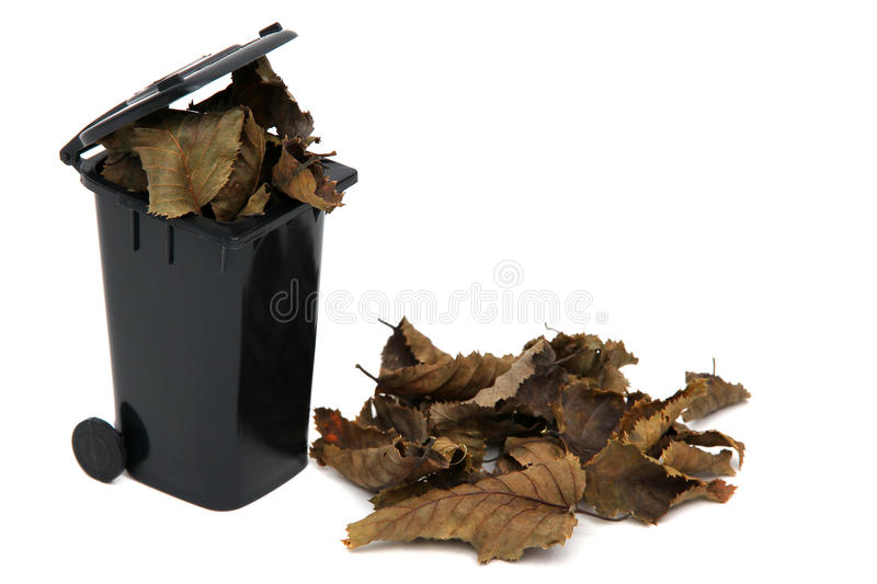 Organic waste in rubbish bin. Organic waste in black rubbish bin on white stock photo