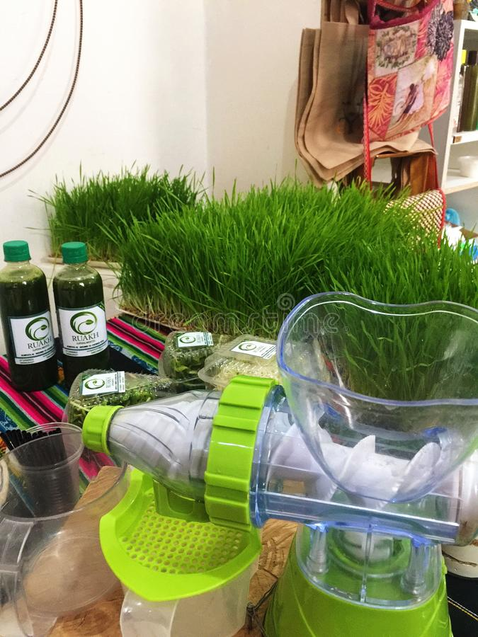 Organic Wheatgrass with Juicer stock images