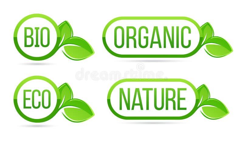Organico, naturale, bio-, etichette di vettore di eco Eco, bio-, organico, elementi freschi verdi delle foglie della natura illustrazione di stock