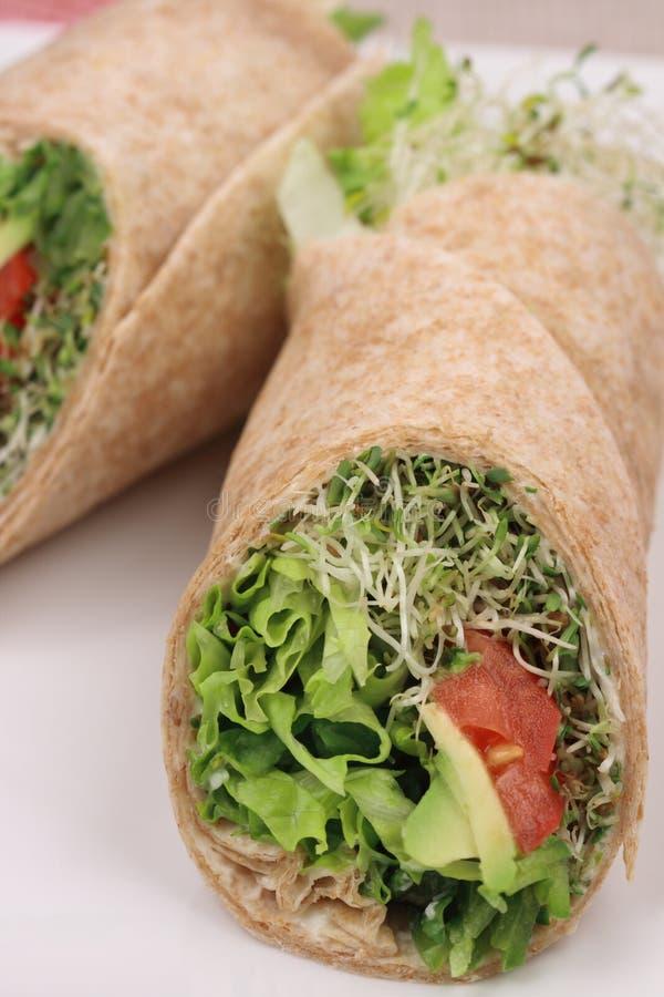 organiczne opakunki jaroszy zdrowe obraz stock