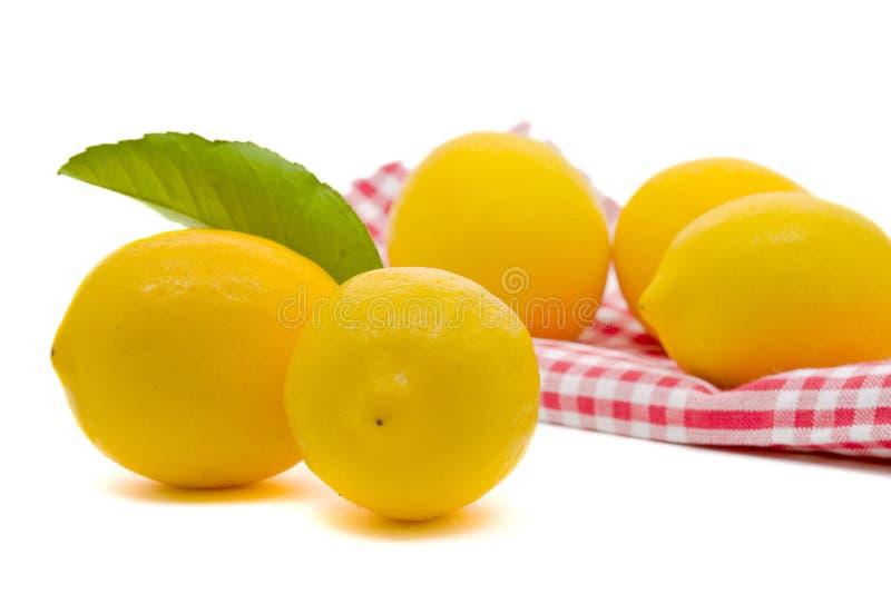 organicznie świeże cytryny obrazy stock
