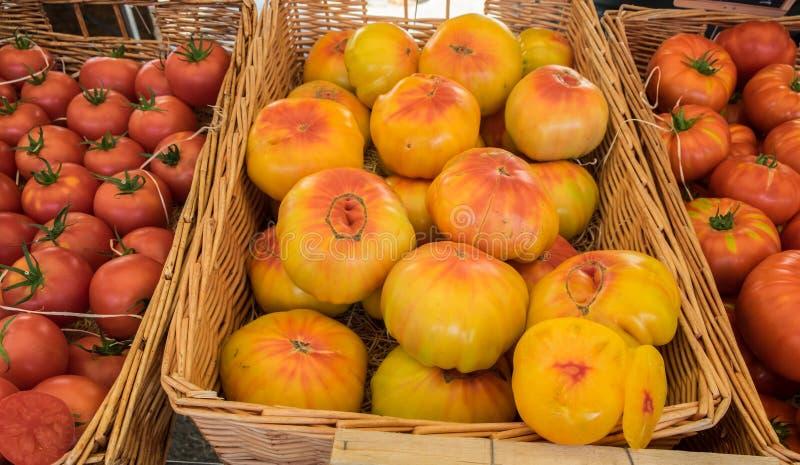 Organicznie świezi żółci pomidory zdjęcia royalty free