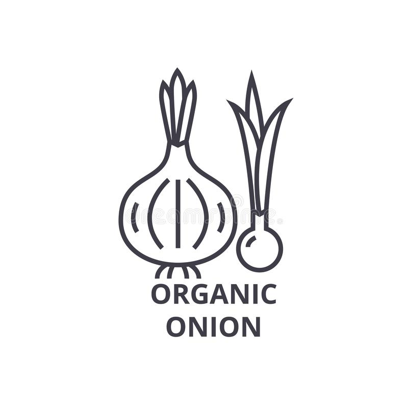 Organicznie cebuli linii ikona, konturu znak, liniowy symbol, wektor, płaska ilustracja ilustracja wektor