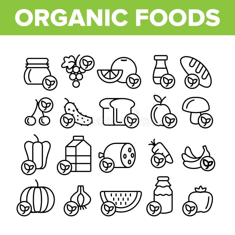 Organicznie Foods wektoru Cienkie Kreskowe ikony Ustawiać ilustracji