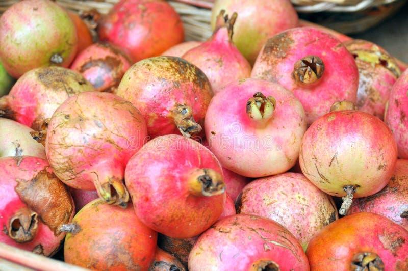 Organicznie granatowiec owoc na sprzedaży w Włochy zdjęcia royalty free