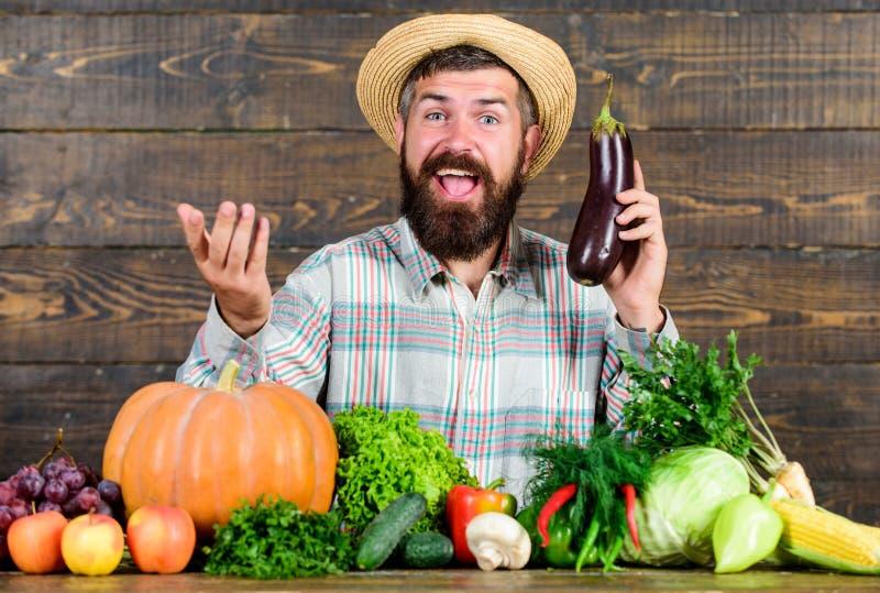 Organicznie horticulture pojęcie Rolnik z organicznie warzywami Uprawiać ogródek systemy i uprawiać ziemię przepisujemy specyfika obraz royalty free