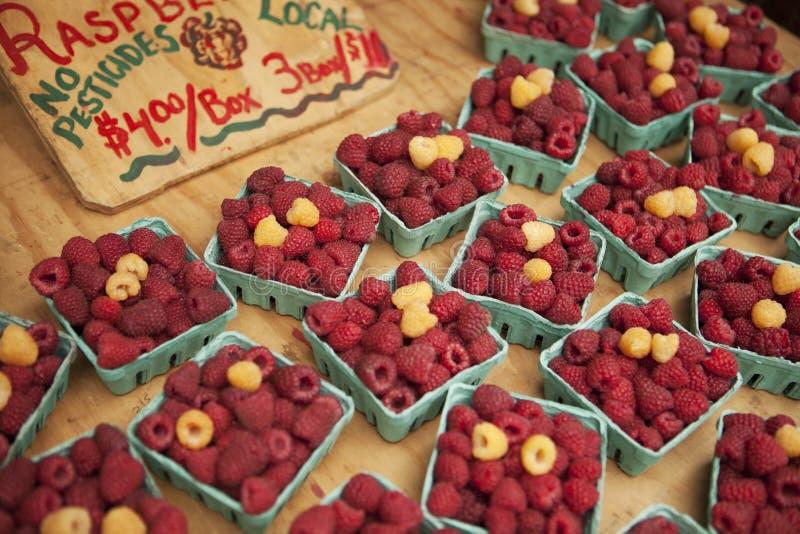 Organicznie malinki dla sprzedaży przy rolnikami Wprowadzać na rynek obraz royalty free