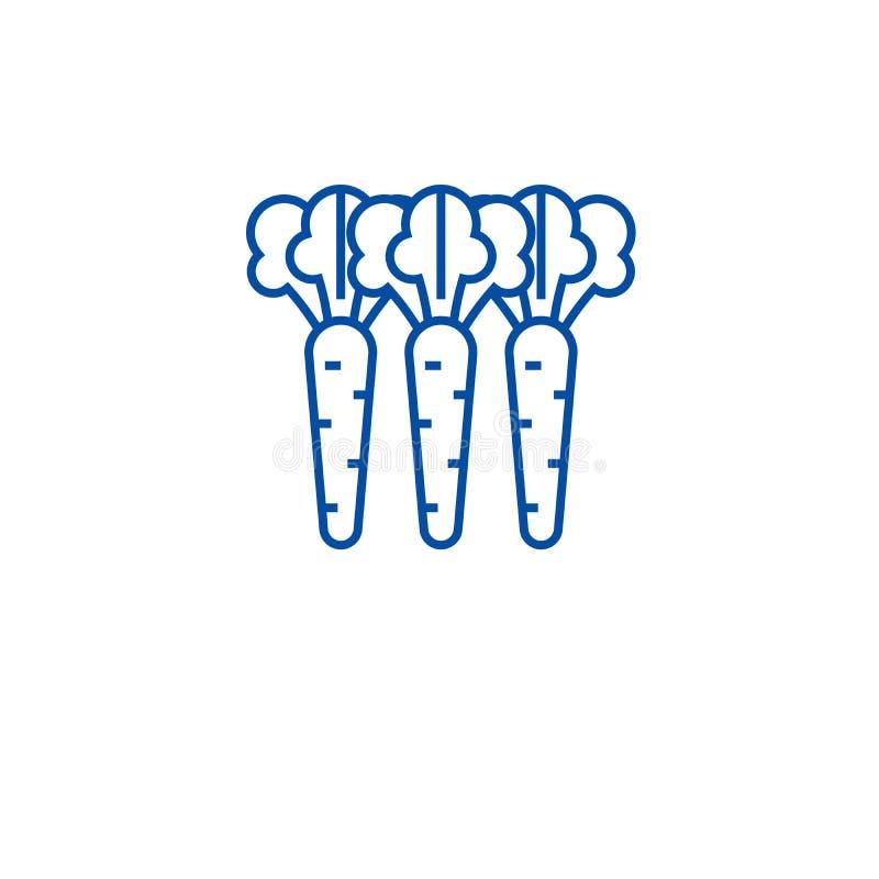 Organicznie marchewek ikony kreskowy pojęcie Organicznie marchewek płaski wektorowy symbol, znak, kontur ilustracja ilustracji