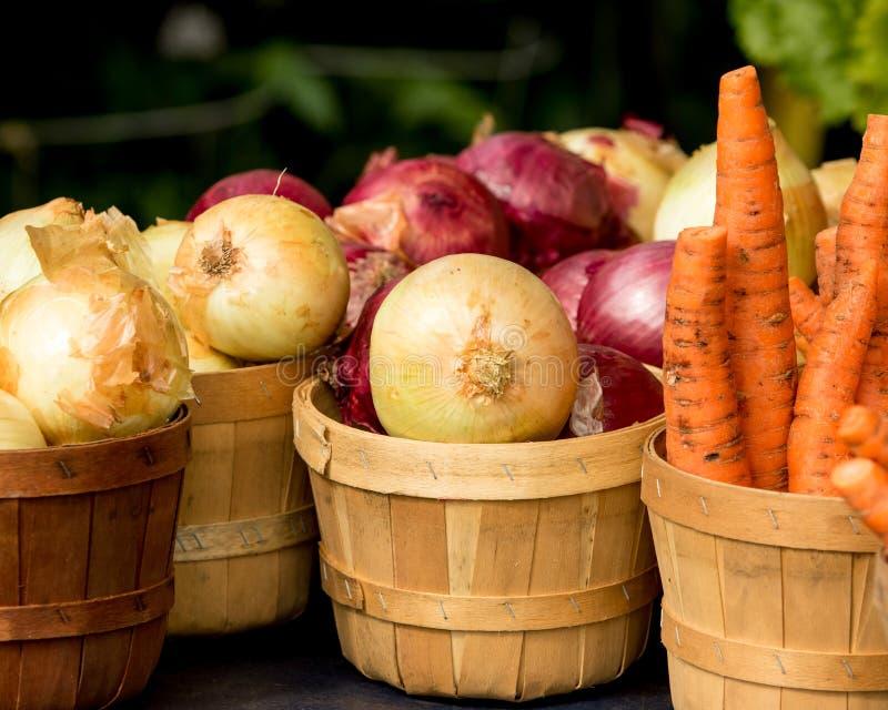 Organicznie marchewki w koszu i cebule obrazy royalty free