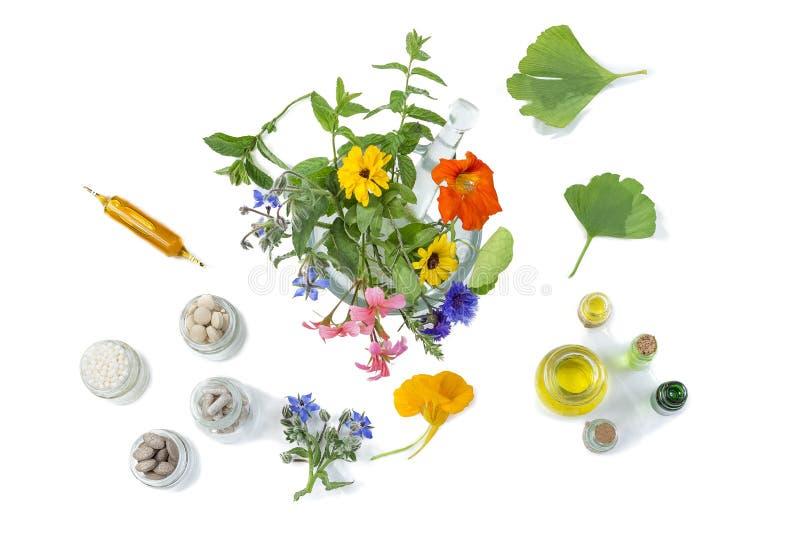 Organicznie medyczne pigułki z ziołową rośliną w motar na białym tle ethnoscience pojęcie Odgórny widok zdjęcia royalty free