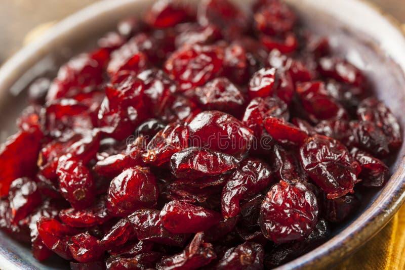 Organicznie rewolucjonistki Wysuszeni Cranberries fotografia stock