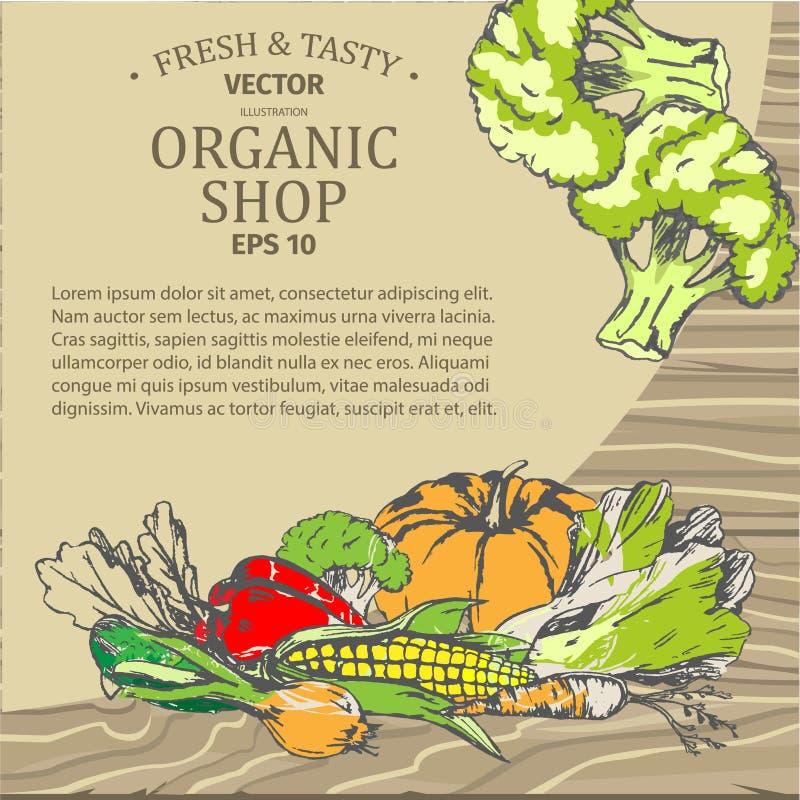 Organicznie Sklepowa reklama z Świeżymi warzywami royalty ilustracja