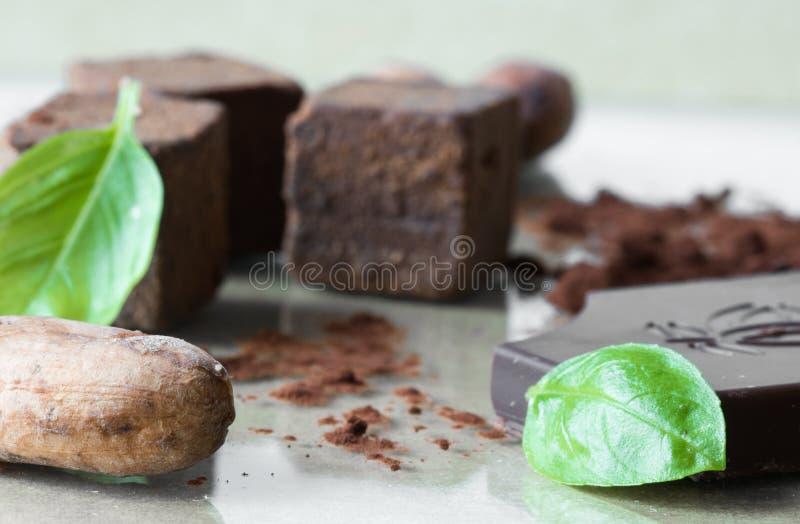 Organicznie surowy cacao fasoli ziarno z czekolady, proszka i cacao cukierku deserowymi sześcianami towarzyszącymi basilem, ziele obraz royalty free