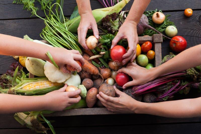 Organicznie uprawia ziemi? ?niwo, ?wie?y jesie? brud, korzeniowy jedzenie obraz royalty free