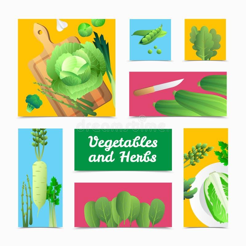 Organicznie warzyw ziele Kolorowi chodnikowowie Plakatowi royalty ilustracja