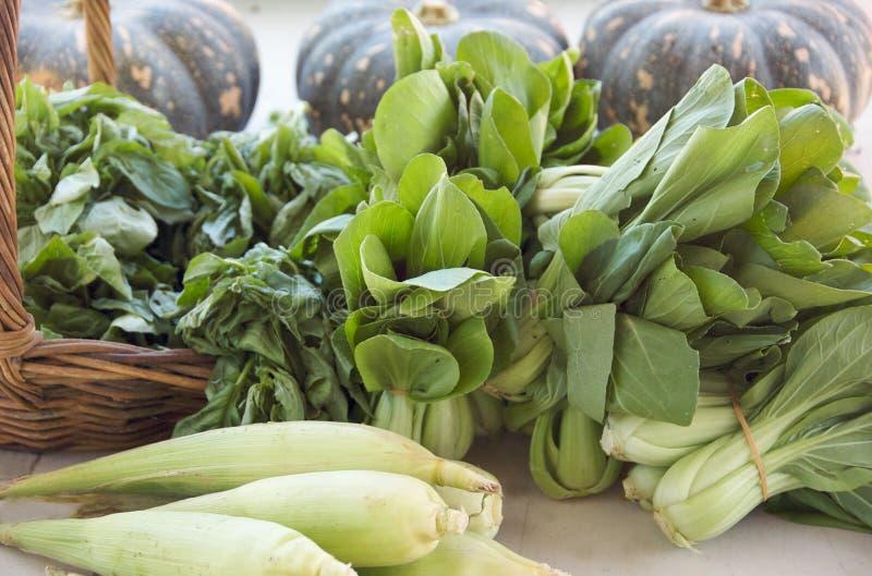 organicznie warzywa zdjęcia stock