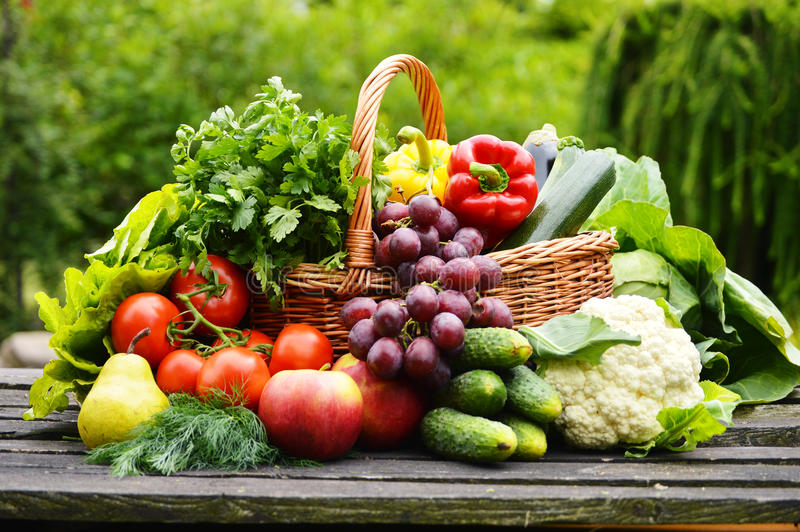 Organicznie warzywa w łozinowym koszu w ogródzie fotografia royalty free