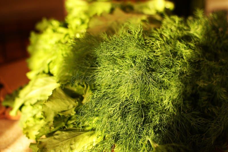 Organicznie weganin przygotowywa na kuchni zdjęcie royalty free