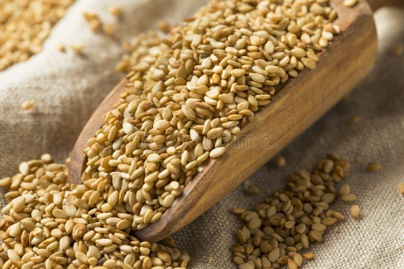 Organicznie Wznoszący toast Sezamowi ziarna obrazy stock