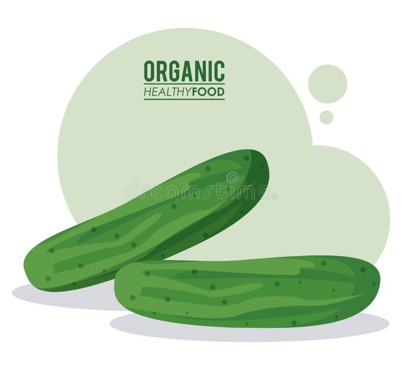 Organicznie zdrowy karmowy ogórkowy warzywo ilustracja wektor