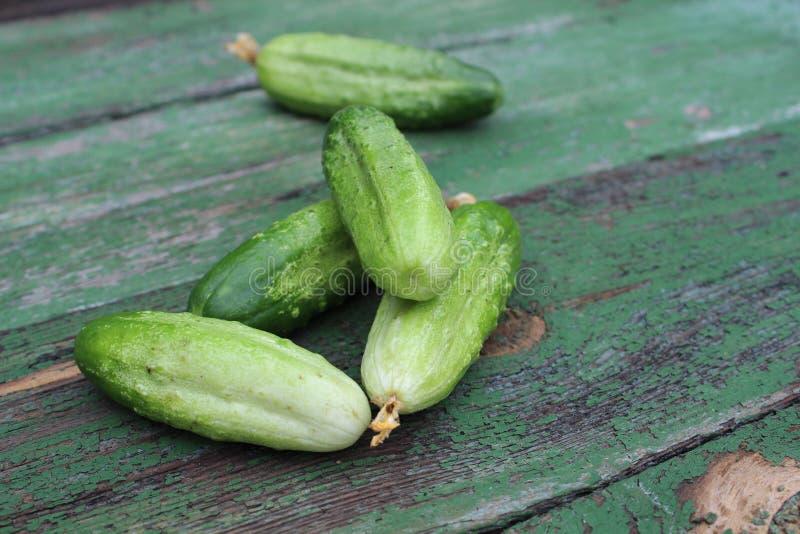 Organicznie zieleni ogórki na tle deski fotografia royalty free