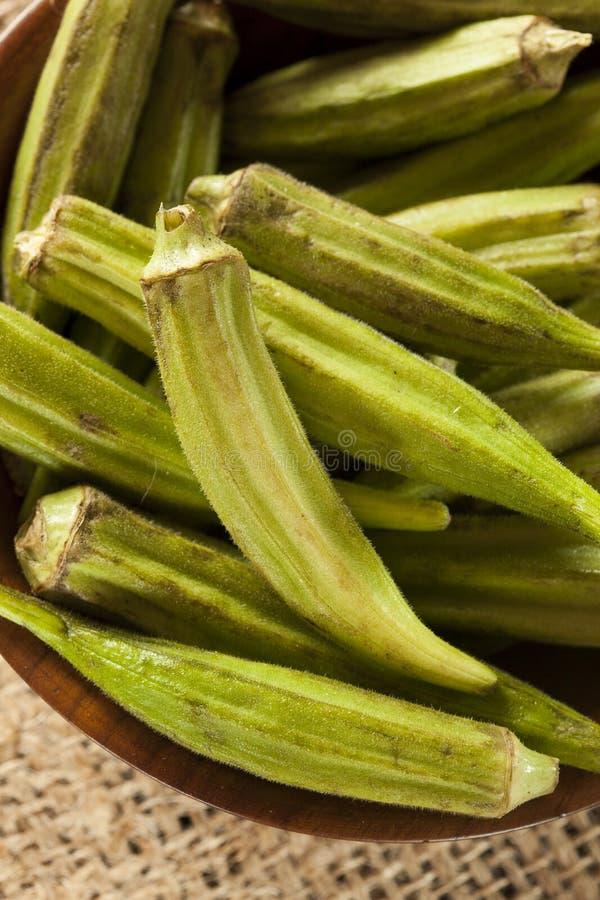 Download Organicznie Zielony Okra Warzywo Zdjęcie Stock - Obraz: 31840668