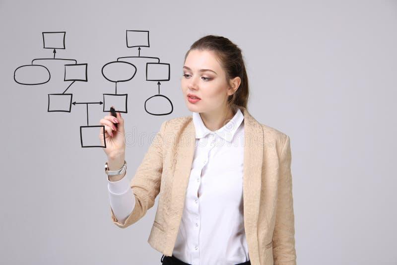 Organigrama del dibujo de la mujer, concepto del proceso de negocio fotos de archivo libres de regalías