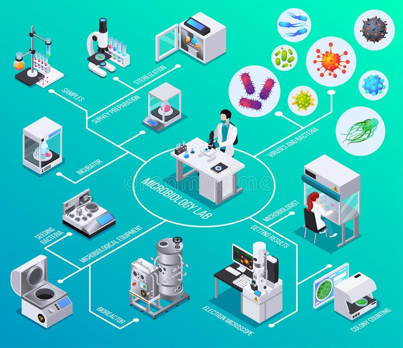 Organigrama isométrico del laboratorio de la microbiología libre illustration