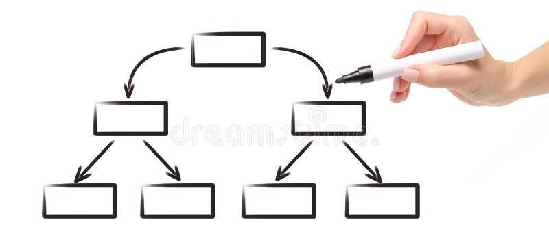 Organigrama vacío del esquema del diagrama del dibujo del marcador del negro de la mano foto de archivo libre de regalías