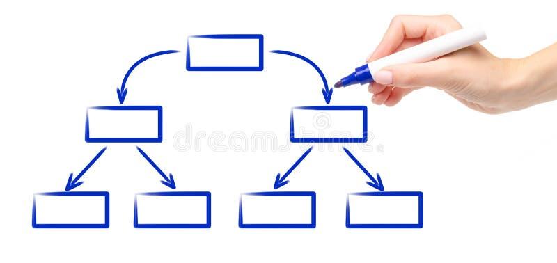 Organigrama vacío del marcador de la mano del dibujo del esquema azul del diagrama imagenes de archivo
