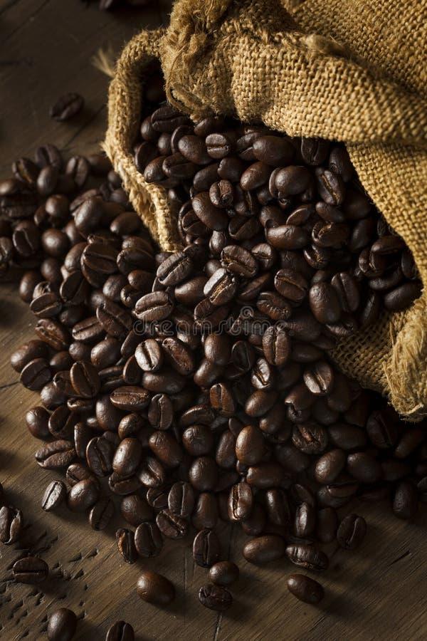 Organique séchez les grains de café rôtis photo stock