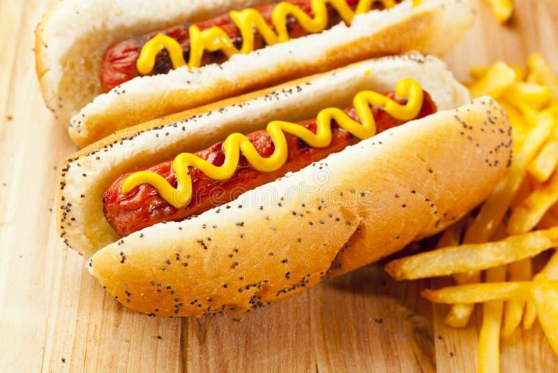 Organique tout le hot dog de boeuf image stock