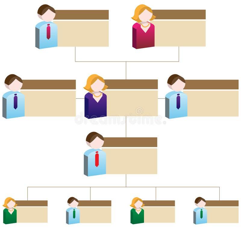 organisatorisk diagrammångfald royaltyfri illustrationer