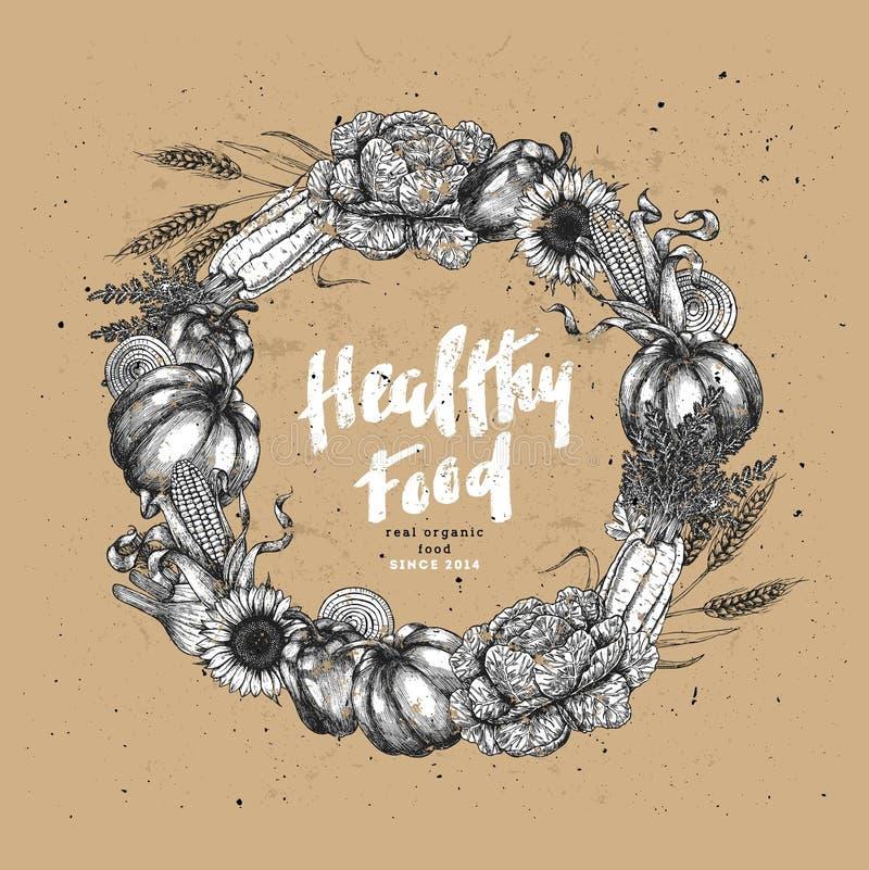 Organisch het ontwerpmalplaatje van de groentenkroon Handsketched uitstekende groenten De kunstillustratie van de lijn Vector ill royalty-vrije illustratie