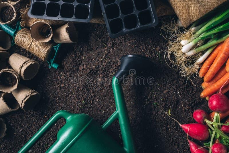 Organisch inlands opbrengst en het tuinieren materiaal met exemplaarruimte stock afbeelding