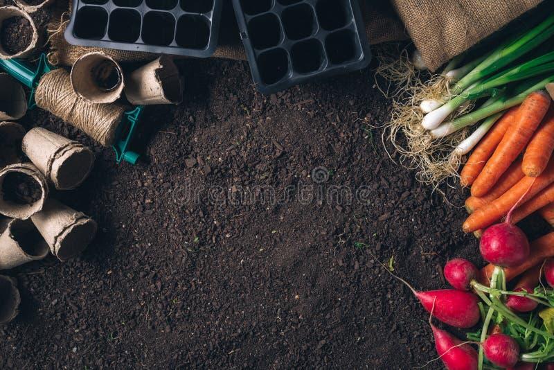 Organisch inlands opbrengst en het tuinieren materiaal met exemplaarruimte royalty-vrije stock afbeeldingen